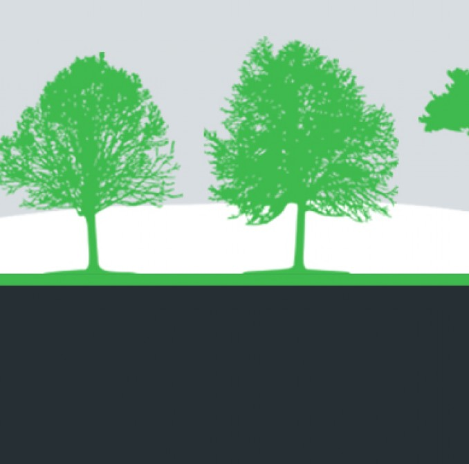 A graphic of trees